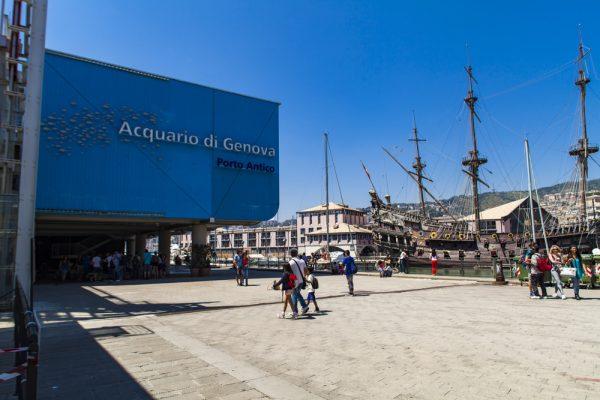 Gli acquari più belli d'Italia: da Genova ad Alghero un tuffo nella natura