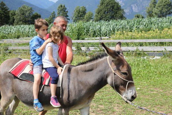 Vacanze nella natura, il Trentino a misura di bambino