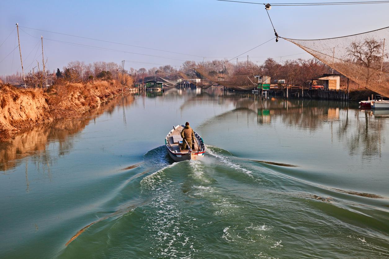 Parco Fluviale Delta del Po